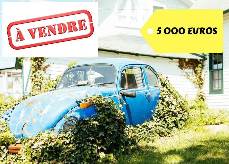 A VENDRE 10 000 euros-2